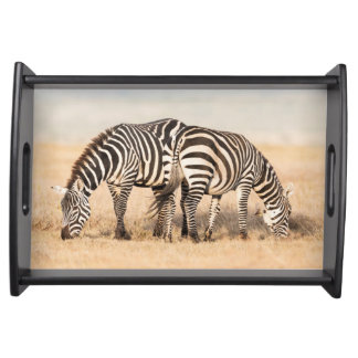 Plains Zebra Or Common Zebra (Equus Quagga) 2 Serving Tray