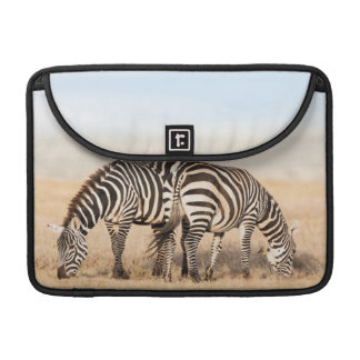 Plains Zebra Or Common Zebra (Equus Quagga) 2 Sleeve For MacBooks