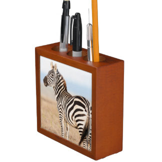 Plains Zebra Or Common Zebra (Equus Quagga) 3 Desk Organiser