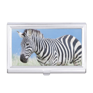 Plains Zebra Or Common Zebra (Equus Quagga) Business Card Holder