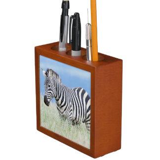Plains Zebra Or Common Zebra (Equus Quagga) Desk Organiser