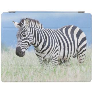 Plains Zebra Or Common Zebra (Equus Quagga) iPad Cover