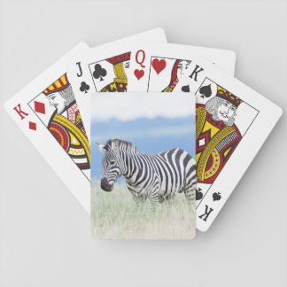 Plains Zebra Or Common Zebra (Equus Quagga) Playing Cards