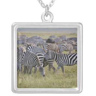 Plains Zebras on migration, Equus quagga, 2 Silver Plated Necklace