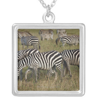 Plains Zebras on migration, Equus quagga, 3 Silver Plated Necklace