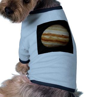 PLANET JUPITER v.4 natural (solar system) ~ Ringer Dog Shirt
