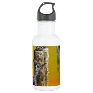 Planet Of Anomalies - Custom Print! 532 Ml Water Bottle