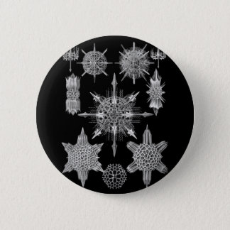 Plankton Skeletons in Black and White 6 Cm Round Badge
