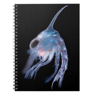 Planktonic Crustacean Notebook