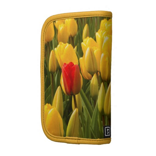 Planner with one red tulip