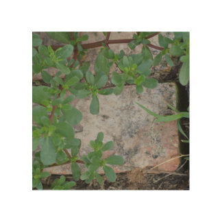 Plant and Brick (on Wood?) Wood Wall Decor