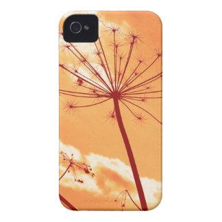 plant iPhone 4 cases