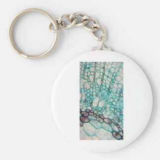 plant cells micrography key chain