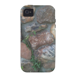 Plant climbing a stone wall case for the iPhone 4