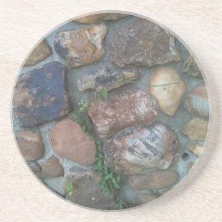 Plant climbing a stone wall coasters