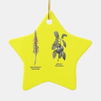 Plant Design Ornament