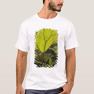 Plant detail at a botanical garden, Ecuador 2 T-Shirt