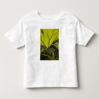 Plant detail at a botanical garden, Ecuador 2 Toddler T-Shirt