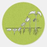 Plant Germination Illustration Round Sticker