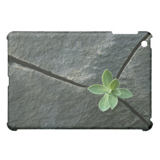 Plant Growing in Cracked Boulder Cover For The iPad Mini