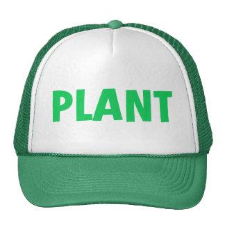 PLANT HAT