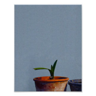 Plant in Pot Poster