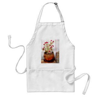 Plant In Terracotta Pot Standard Apron