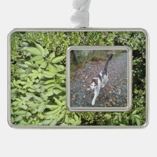 Plant leaf silver plated framed ornament