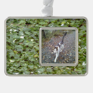 Plant Photo Silver Plated Framed Ornament