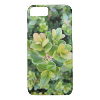 plant picture on IPhone case