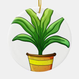 plant pot round ceramic decoration