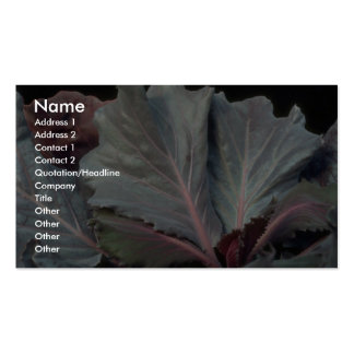 Plant Purple Cabbage Pack Of Standard Business Cards