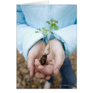 Plant seedling card