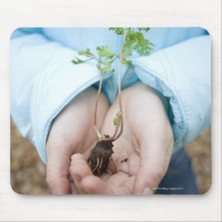 Plant seedling mouse mat