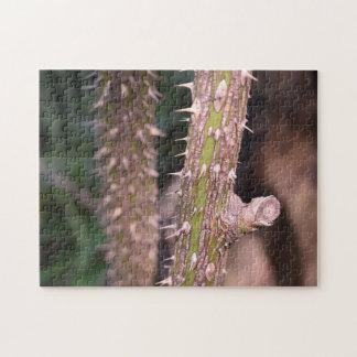 Plant Stem Thorns Nature Park Photography Jigsaw Puzzle