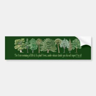 Plant Trees - Tree Lover Hugger Bumper Sticker