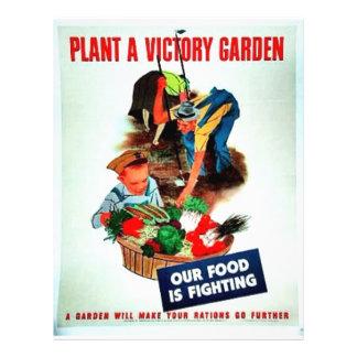 Planta Victory Garden 21.5 Cm X 28 Cm Flyer