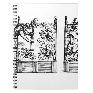Planting in raised beds, from 'The Gardener's Laby Notebook