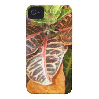 plants 426 iPhone 4 cases