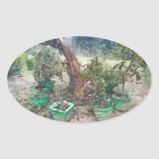 Plants and a tree oval sticker