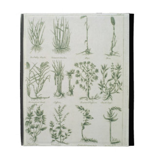 Plants from Culpeper's 'English Physician and Comp iPad Case
