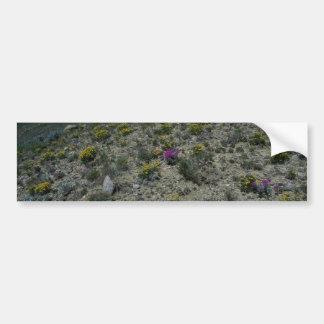 Plants In Heat Bumper Sticker