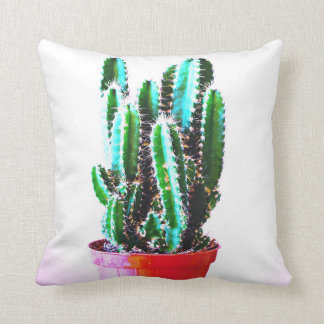 Plants - kissing cactus cushion
