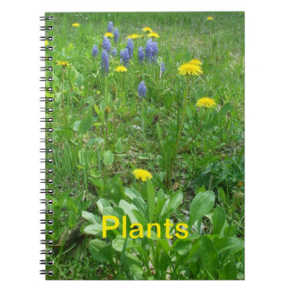 Plants Note Books