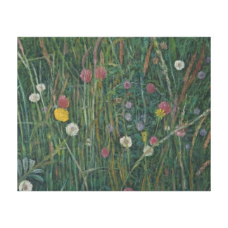 Plants of the Machair 2008 Gallery Wrap Canvas