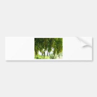 plants over arbor 1 car bumper sticker