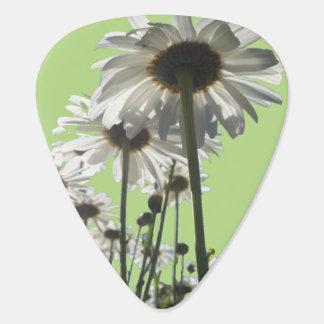 Plants Rule the World Guitar Pick