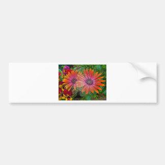 Plastic wrap bumper sticker