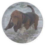 Plate Basset Hound In The Sea