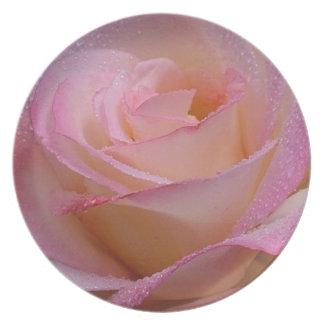 Plate Beautiful Pink Rose
